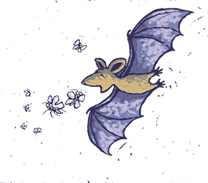 Illustrated bat catching insects
