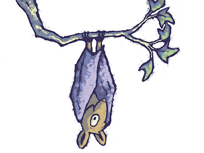 Illustrated bat hanging from a tree