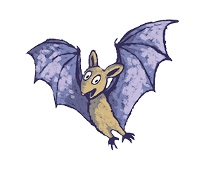 An illustrated bat called Ciara